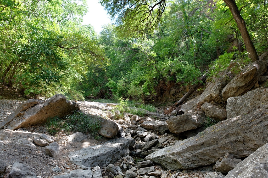The Shoal Creek Greenbelt offers an unexpected retreat in the heart of Austin.